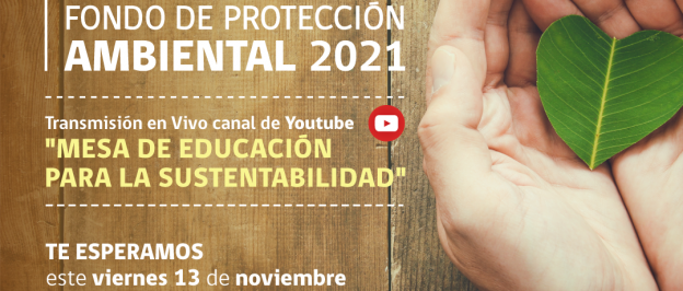 Invitan a Taller Online para postular al Fondo de Protección Ambiental 2021